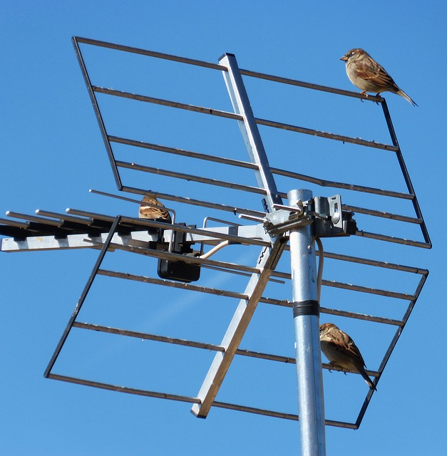 Is UHF Antenna a Better Choice than VHF?